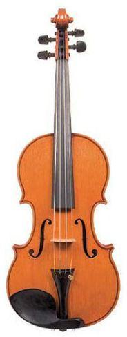 violin2005_1_top